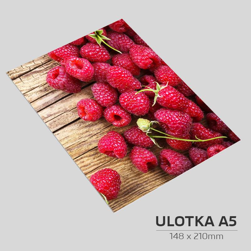 Ulotka A5 - 2000szt.